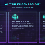 What is Falcon Project?