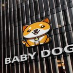 how-to-buy-babydoge-coin-1624892508982